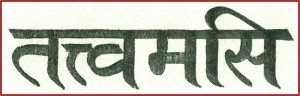 Quello sei tu in sanscrito