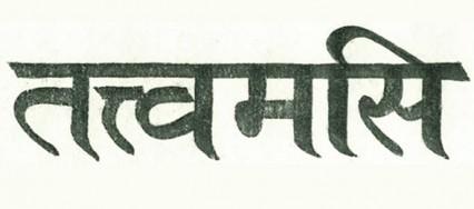 Quello-sei-tu-in-sanscrito